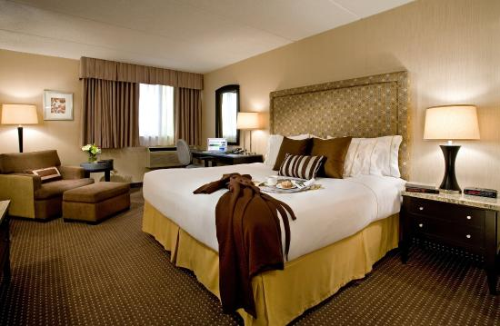 KIng size bed room Holiday Inn Express Chicago Palatine
