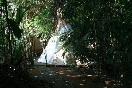 Palma Quemada, Costa Rica: Our teepee!