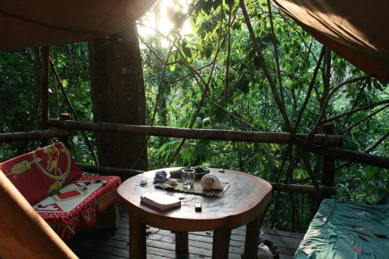 Palma Quemada, Costa Rica: Our teepee porch surrounded by rainforest