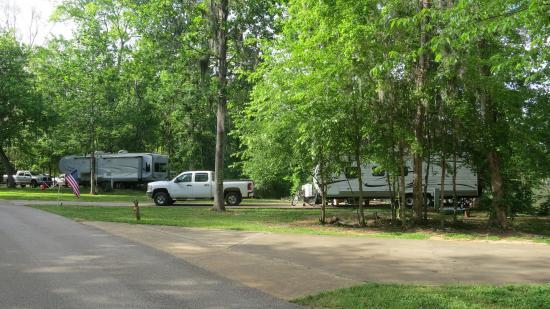 Lowndesboro, AL: Plenty of room for big rigs - trees provide privacy
