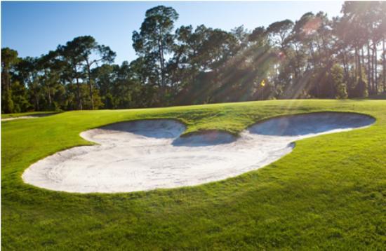 Disney's Magnolia Golf Course: Hole #6