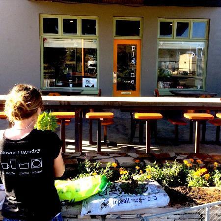 Alpine, TX: Great patio!