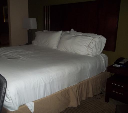 Holiday Inn Express Lake Wales N - Winter Haven: King size Bed
