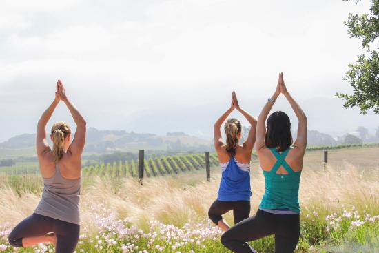 The Carneros Inn: Yoga