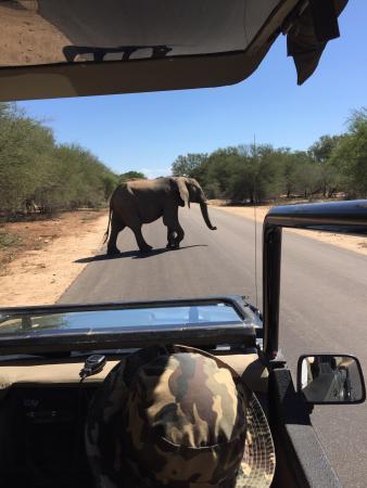 Hazyview, Sydafrika: photo2.jpg