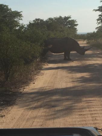 Hazyview, Sydafrika: photo3.jpg