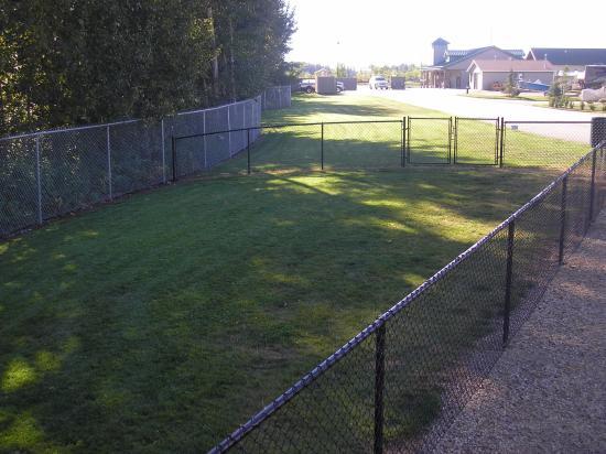 Stony Plain, Canadá: spacious off leash dog are.