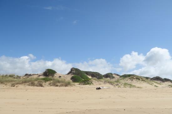 Dunes de Dovela eco-lodge: Dunes to walk and look around
