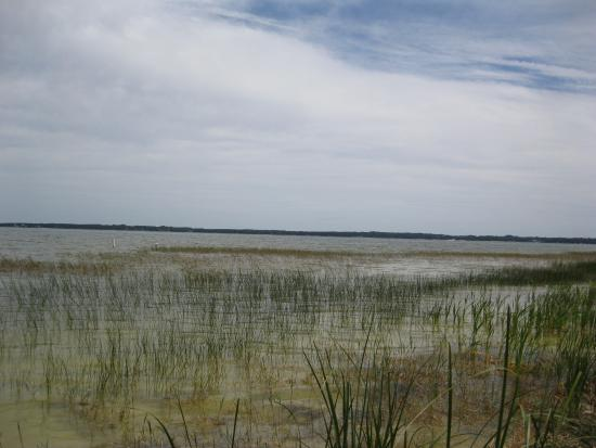 Ocklawaha, Flórida: Lake Weir, shot from the Lake Weir Facility at Carney Island Recreation & Conservation Area