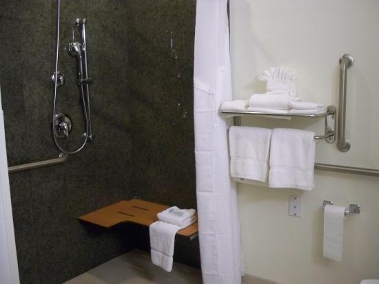 Gretna, NE: Roll in shower