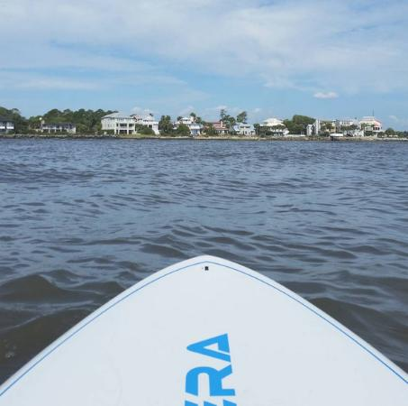 Kingfisher Paddleventures: View from my paddle board!