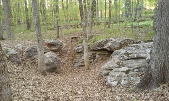 Chapel Hill, TN: Geology of Henry Horton State Park