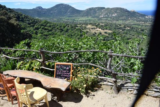 Pigna, ฝรั่งเศส: vue de la terrasse 3