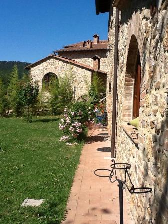 Rosia, Italia: Borgocalcinari,immerso nel Parco Naturale di Brenna,fiume,tranquillità,solo il canto degli anima