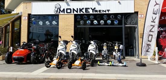 Monkey Rent