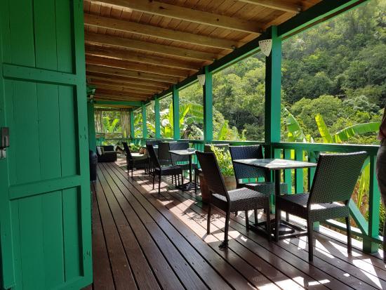 Antigua Rainforest Canopy Tour: Viewing area