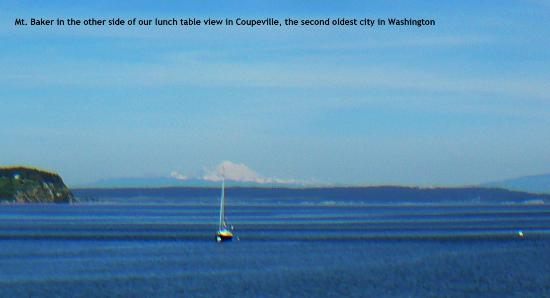 Coupeville, WA: Right side of the view from our table
