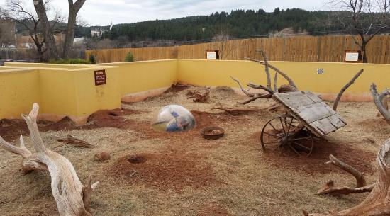 Reptile Garden Rapid City Sd Picture Of Reptile Gardens Rapid City Tripadvisor