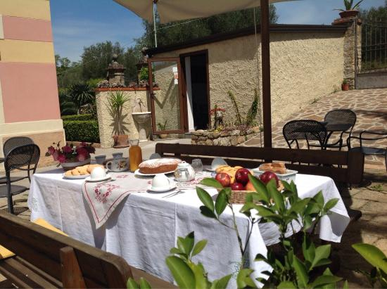 Cilento and Vallo di Diano National Park, อิตาลี: Colazione in giardino