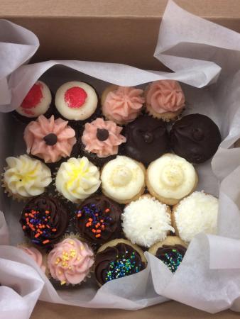 Babycakes Mini Cupcake Bakery