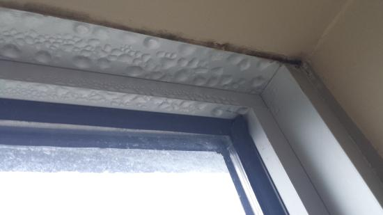 Water dripping from around top of window frame and mold (black)
