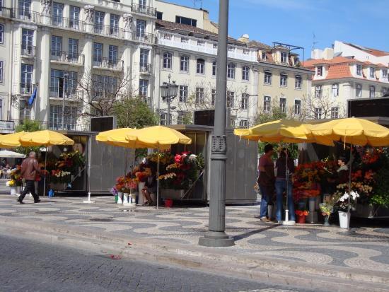 Alface Hostel Lisboa: Lisbon
