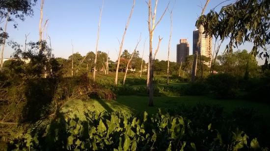 Marechal Mascarenhas de Moraes Park