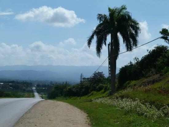 Landscape - Hotel Playa Costa Verde Photo