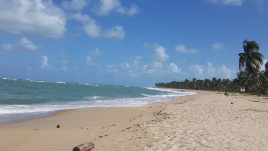 Gunga Beach: Gostei muito da praia, bem tranquila e água gostosa.
