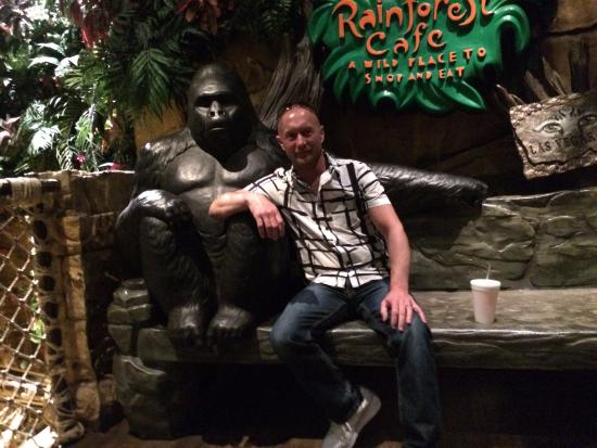 Rain Forest Cafe at MGM Grand Hotel and Casino: Cool experience