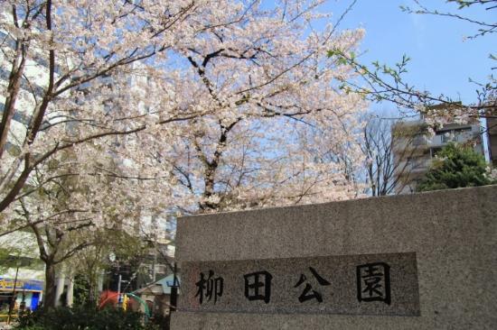 Yanagida Park