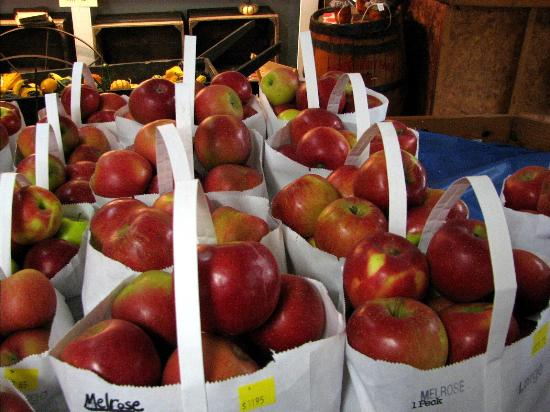 Lebanon, OH : Irons Fruit Farm