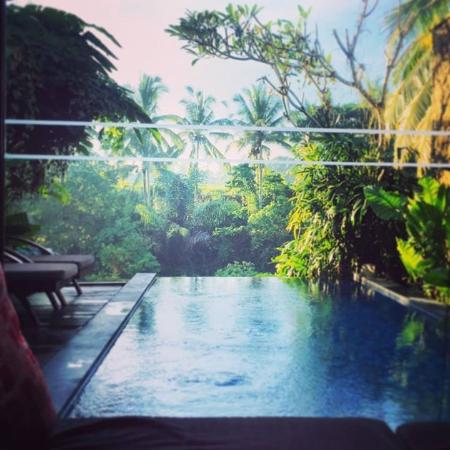 Ubud Green: View of the private swimming pool from the villa's living space
