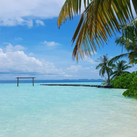 Biyadhoo Island Resort Picture Of Biyadhoo Island Resort