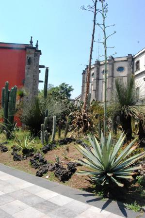 jardines al interior del palacio nacional