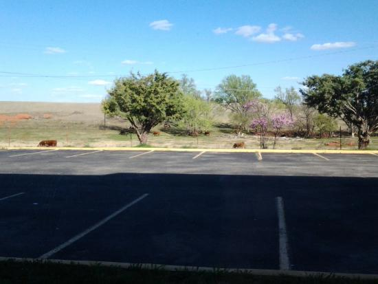 Clinton, OK: Our view from our hotel window