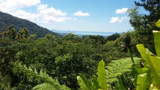 Casa Flamboyant : Looking towards Vieques!
