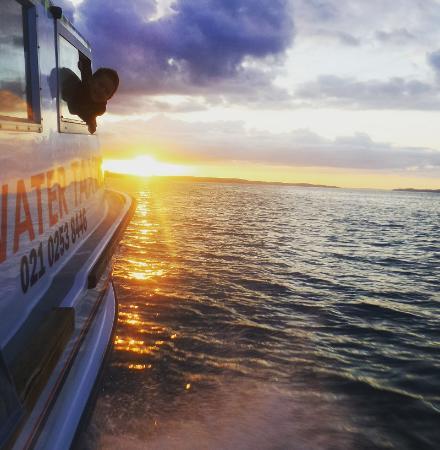 Isla Waiheke, Nueva Zelanda: Water Taxi