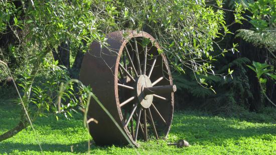 Waihi, Nya Zeeland: Old wheel