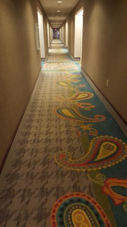 Hampton Inn Scottsburg: Loved this carpet.