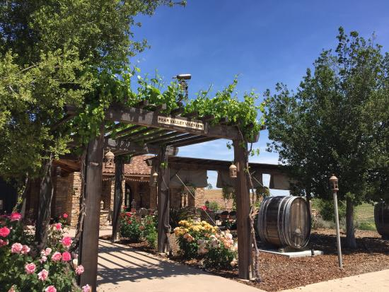 Grapeline Wine Tours, Paso Robles: photo1.jpg