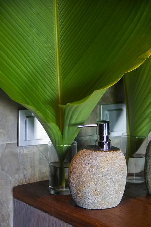 Gayatri Bungalows: The soap dispenser of Room 9
