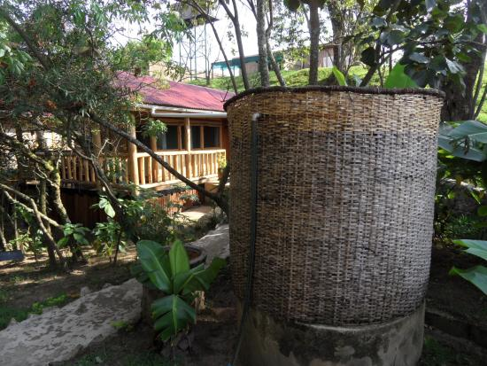 Zdjęcie Nkuringo Bwindi Gorilla Lodge
