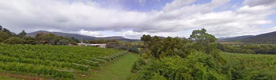 Richmond, Australia: View over vineyard and valley