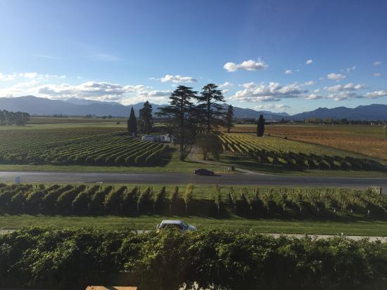 Μπλένχαϊμ, Νέα Ζηλανδία: photo0.jpg