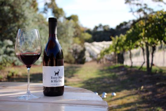 Richmond, Australien: Pinot and sunshine - great match!