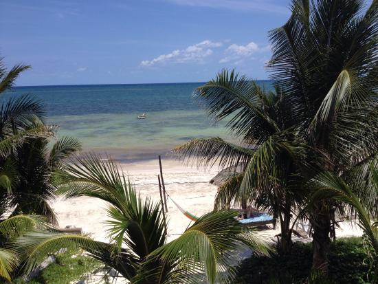 Hotel Maya Luna: View from rooftop patio