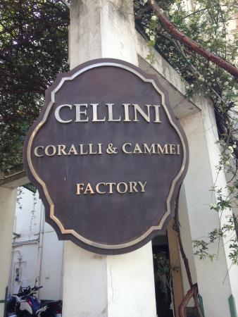 ‪Cellini Gallery Cameos & Corals‬