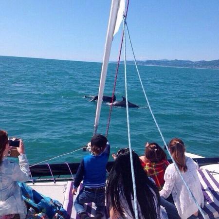 Sochi Yachting