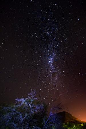Eastern Cape, Sør-Afrika: Stars at night from the viewing deck of the campsite